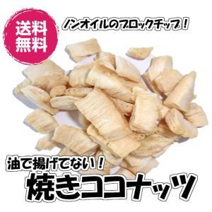 焼きココナッツ 塩味 マレーシア産 ドライフルーツ 送料無料 (焼ココナッツ60g×3P)ココナッツ  おやつ チャンク チャック袋 お試しパック fs-yokohama