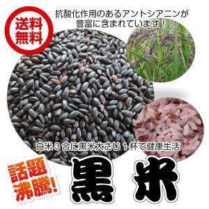 抗酸化作用(黒米 1kg)香川県産 減農薬基準 黒米  ダイエット 産直|fs-yokohama