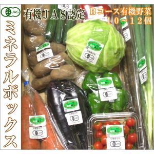 ミネラルボックス 有機JAS野菜詰め合わせBコース(青森県 はまなす生産組合)無農薬オーガニック野菜セット・送料無料・クール便無料|fs21
