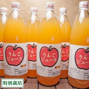 りんご100%ジュース 6本入(1本1000ml) (青森県 阿部農園) 産地直送【お中元対応】|fs21