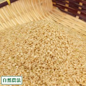 【令和元年度産】あきたこまち 玄米5kg 自然農法 (青森県 アグリメイト南郷) 産地直送 fs21