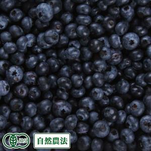【加工用】生ブルーベリー 1kg 自然農法 (青森県 根岸観光農園) 産地直送【クール料金込み】|fs21