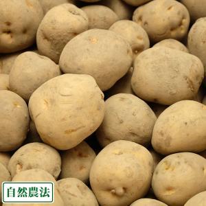 北あかり 5kg(M〜Lサイズ) 自然農法 農薬不使用(無農薬) (青森県 アグリメイト南郷) 産地...