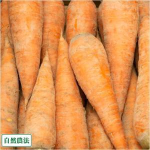 土付き にんじん 10kg 自然農法 (青森県 アグリメイト南郷) 産地直送 fs21