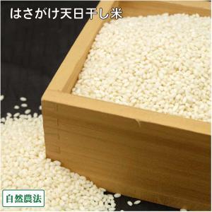 田口さんちのはさがけ天日干しもち米(アネコもち) 白米 1kg 農薬不使用 (青森県 だんごっこファーム) 産地直送|fs21