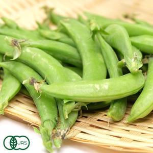 スナップエンドウ バラ詰め1kg 有機JAS (青森県 自然食ねっと青森) 産地直送|fs21