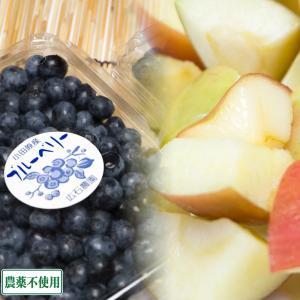 冷凍カットりんご&冷凍ブルーベリーセット 合計約2kg(ふるさと21おすすめ)農薬不使用・送料無料|fs21