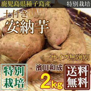 安納芋 土付きサイズ無選別(SS〜2L) 2kg 特別栽培 ...