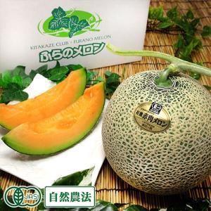 ルピアレッド 2玉(1玉 1.6kg以上) 有機JAS (北海道 原田農園) 自然農法 産地直送|fs21