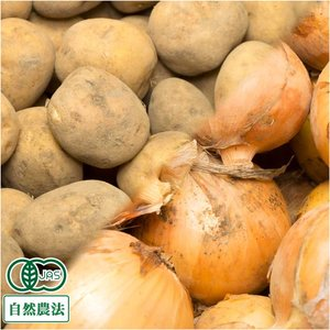 じゃがいも 玉ねぎセット10kg 有機JAS 自然農法 (北海道 はるか農園) 産地直送|fs21