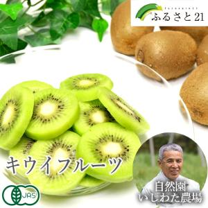 キウイフルーツ 3kg(神奈川県 石綿敏久) 有機JAS 農薬不使用 無肥料 送料無料 産地直送 オーガニック