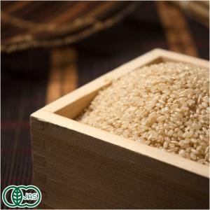 お米 30年度産 ひとめぼれ 玄米10kg 有機栽培米 オーガニック (岩手県 いわて大東有機) 産地直送 fs21