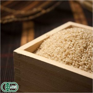 お米 30年度産 ひとめぼれ 玄米20kg 有機栽培米 オーガニック (岩手県 いわて大東有機) 産地直送 fs21