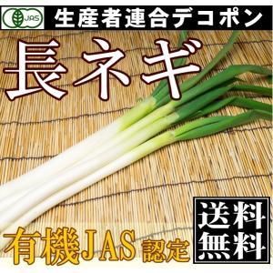 【クール便】【有機JAS】長ねぎ 2~4本×5袋(千葉県 生産者連合デコポン)|fs21