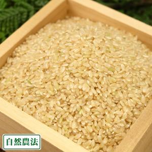 お米 30年度米 河原さんのお米 玄米10kg 無農薬無農薬米(岡山県 河原農園) 産地直送|fs21