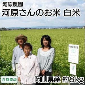 お米 30年度米 河原さんのお米 白米 約9kg 無農薬無農薬米(岡山県 河原農園) 産地直送|fs21