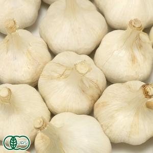 乾燥にんにく 福地ホワイト六片種 1kg 有機JAS (青森県 中里町自然農法研究会) 産地直送|fs21