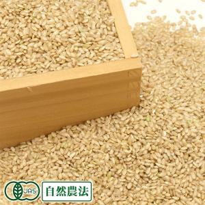 お米 30年度産 つがるロマン 玄米10kg 有機栽培米 オーガニック (青森県 中里町無農薬研究会) 産地直送|fs21