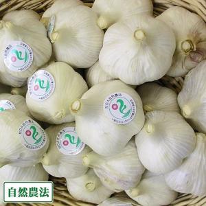 乾燥にんにく(玉) 2kg 自然農法 (宮崎県 永田農園) 産地直送|fs21