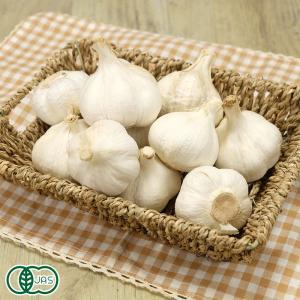 [セール]乾燥にんにく(玉) A品M〜Lサイズ 10kg 有機JAS (熊本県 那須自然農園) 産地直送|fs21