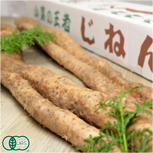 有機 自然薯 家庭用 約1.2kg×2箱 有機JAS・自然農法 (熊本県 那須自然農園) 産地直送