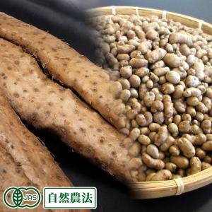 有機 自然薯 家庭用 約2.4kg(2〜10本)・むかご200gセット 有機JAS・自然農法 (熊本...