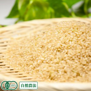 お米 30年度産 お試し米 清正 玄米3kg 無農薬 (熊本県 那須自然農園) 産地直送|fs21