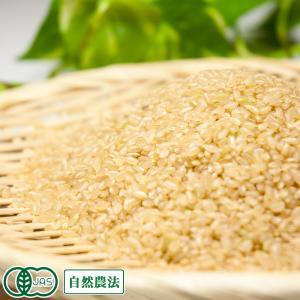 お米 30年度産 清正 玄米5kg 無農薬 (熊本県 那須自然農園) 産地直送|fs21
