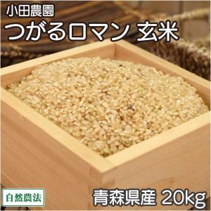 お米 30年度米 つがるロマン 玄米 20kg 無農薬 (青森県 小田農園) 産地直送|fs21