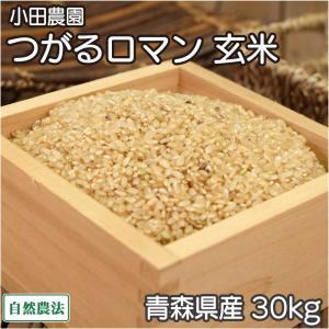 お米 30年度米 つがるロマン 玄米 30kg 無農薬 (青森県 小田農園) 産地直送|fs21