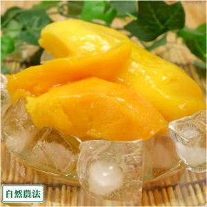 冷凍マンゴー(アーウィン) 2kg 自然農法 (沖縄県 沖縄マンゴー生産研究会) アップルマンゴー|fs21