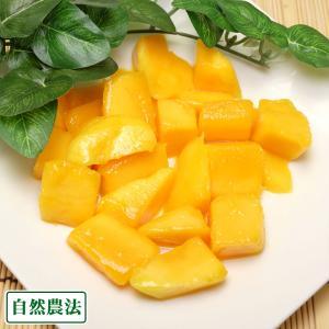 冷凍カットマンゴー 4kg 自然農法 (沖縄県 沖縄マンゴー生産研究会) 送料無料