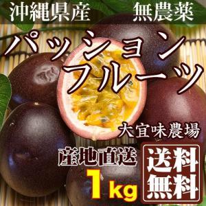 【家庭用B品】 パッションフルーツ サイズ混合 約1kg 自然農法 (沖縄県 大宜味農場) 産地直送