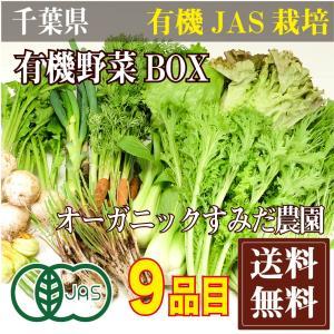 有機野菜BOX 有機JAS(千葉県 オーガニックすみだ農園) 無農薬野菜詰め合わせパック 産地直送|fs21