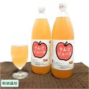 りんご100%ジュース 6本 特別栽培 (青森県 田村りんご農園) 産地直送|fs21