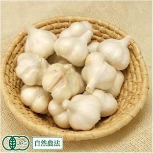 田子にんにく Lサイズ(玉) 10kg 自然農法 (青森県 やまもと農産) 産地直送