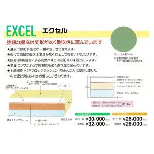 【一畳から発送】軽量化学柔道畳≪衝撃吸収と耐久性≫「エクセル」 fst