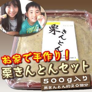 お家で手作り!栗きんとんセット(500g)|fu-kido