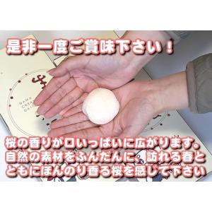 季節限定!さくら生クリーム大福セット10個入 (簡易箱)|fu-kido|04