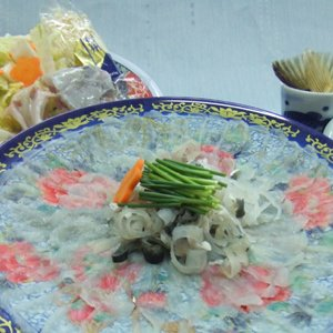 【愛知県産】天然とらふぐ刺しセット(3〜4人前)|fugu