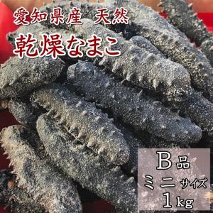 お徳用 乾燥なまこ 干しなまこミニ・キズ有り1kg 愛知県産|fugu