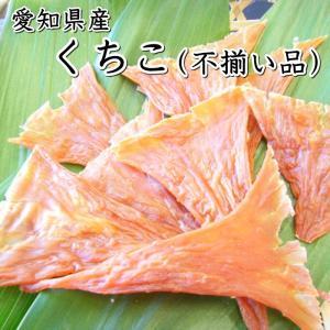 お買い得♪くちこ不揃い品【愛知県産】|fugu