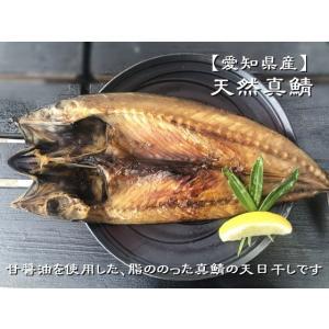 【愛知県産】天然真鯖の干物 1尾|fugu