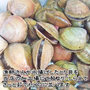 【愛知県産】とり貝(小)|fugu|03