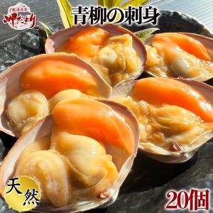 【愛知県産】青柳(バカ貝)むき身25個入り|fugu