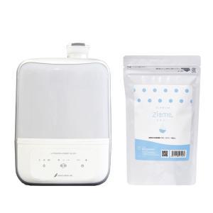 弱酸性次亜塩素酸パウダー ジアミー 次亜塩素酸水専用噴霧器MX-200+40包入セット|fuji-life