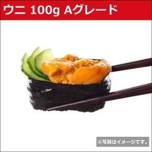 ウニ 100g 雲丹 うに すし 鮨 寿司 軍艦 どんぶり 丼 安 6700000599|fuji-s