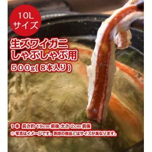 新鮮だから生食も可能 特大 本ズワイガニ しゃぶしゃぶ用 10L 500g 8本入 かに 蟹 カニ 鍋 しゃぶしゃぶ 刺身 生 安 fuji-s