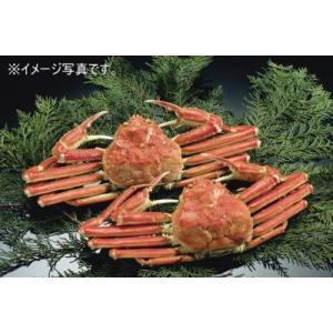 【送料無料】訳あり ボイルズワイガニ姿 4.5kg(5尾入り 1尾約900g)【ずわいがに かに 蟹】