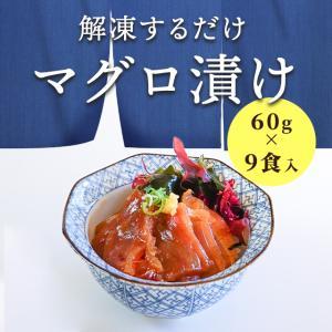 簡単調理 まぐろ漬け 60g×9食入り (3食入りの袋が3セット) 漬け丼 マグロ づけ どんぶり おさしみ 6209033099|fuji-s